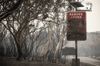 Aftermath on Christmas Eve of the Gospers Mountain fire where it impacted Dargan on the Bells Line of Road.