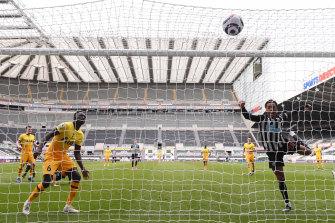 Joe Willock equalises for Newcastle against Spurs.