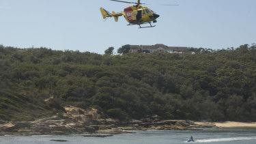 Helicopters swept the beaches looking for any evidence of the shark.