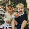 'It's not weird anymore': Sydneysiders embracing chickens as pets