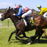 Race-by-race tips and preview for Kembla Grange on Tuesday