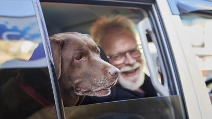 Perth entrepreneur takes on rideshare giants with Australia's first 'Uber for pets'