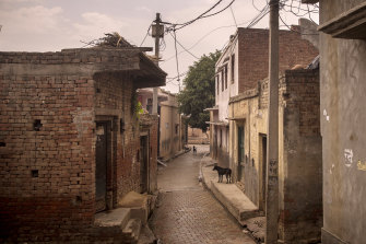Dogs roam in a deserted lane in the village of Basi, Uttar Pradesh, where many fear leaving their homes and becoming infected.