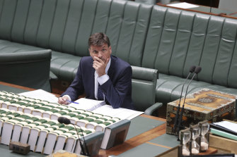Minister for Energy Angus Taylor during debate in the House of Representatives on Thursday.