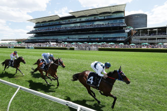 Maid of Ore is among the chances in the listed Albury Gold Cup.