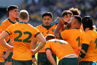 The Wallabies were yet again taught a lesson by their fiercest rivals.