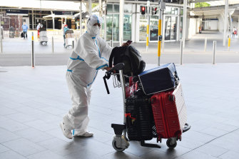 An international traveller arrives at Sydney Airport last month. Traffic has nosedived due to the pandemic.