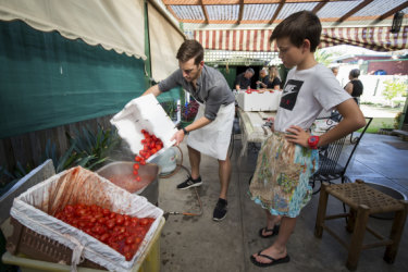 Nathan Jones, left, and Seb Poole load tomatoes into a vat to be heated.