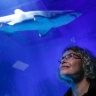 The day Di head-butted a shark: The life of an aquarist