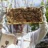 Gavin Sandercoe and his children James and Natasha have gotten into beekeeping.