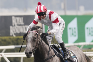 Classique Legend wins the TAB Everest   on Saturday.