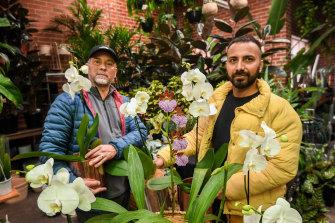 Botanicah Melbourne's Harris Mashood (left) and Marco Pereira are preparing for an orchid rush.