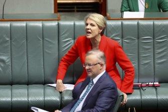 Shadow minister for women Tanya Plibersek reacts to Prime Minister Scott Morrison.