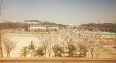 Remote: the view from the police academy where David Zheng is in quarantine in South Korea.