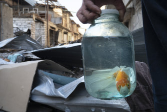 A man holds a jar with a fish that survived shelling by Azerbaijan in Stepanakert, Nagorno-Karabakh.
