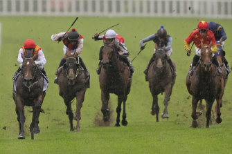 Peltzer, left, runs away with the Bondi Stakes as his rivals struggle in his wake.
