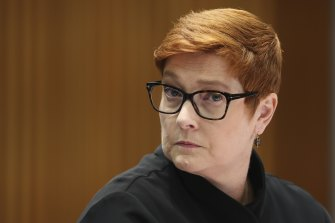 Marise Payne will co-chair a taskforce on women's equality, which will include all women in cabinet, a role that Scott Morrison said will see her be the 'prime minister for women'.