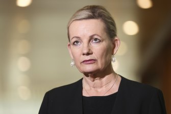 Environment Minister Sussan Ley's appeal says a judge erred in his findings about global temperature rise.