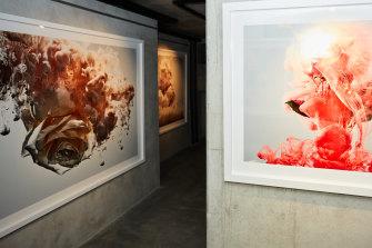 Inside Vicki Lee's Surry Hills Gallery.