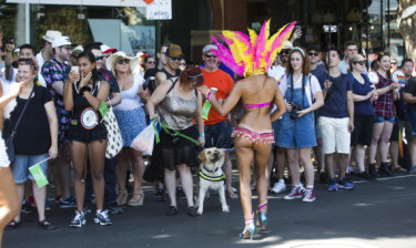 Feeling hot, hot hot: a dancer wows the crowd at Pride March in St Kilda.
