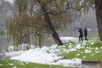 Foam blankets the Merri Creek and foreshore at Coburg Lake Reserve.