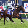 Cox Plate in sight after Camelot stars in Underwood