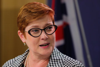 """Australians are becoming better informed and better prepared when they travel"": Foreign Affairs Minister Marise Payne."