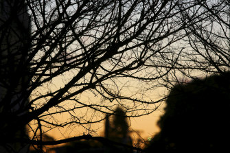 Saturday is tipped to reach 24 degrees with the bureau predicting Sunday will hit 26.