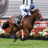 Miami Bound escapes Melbourne Cup penalty as race for entry continues