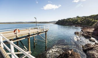 A woman was bitten by a shark at Main Beach in Merimbula on Saturday morning.