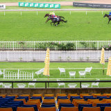Empty seats greet Addeybb and Verry Elleegant's stirring duel in the Ranvet Stakes at Rosehill on Saturday.