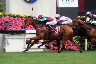 Champion Hong Kong sprinter Beat The Clock.
