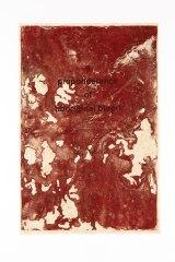 A Preponderance of Aboriginal Blood, 2005, by Judy Watson. © Judy Watson.