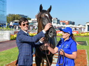 Avilius out to complete a great spring for Godolphin and James Cummings in the Melbourne Cup