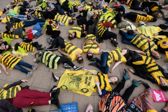 Activists from Extinction Rebellion dressed as bees participate in a die-in protest in Sydney.