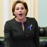 Deputy Premier slams Sunday Mail report as 'total crap, fake news'