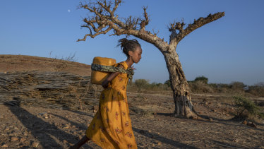 A Tigray woman who fled the conflict in Ethiopia's Tigray region, carries water on her back, at Umm Rakouba refugee camp in Qadarif, eastern Sudan.