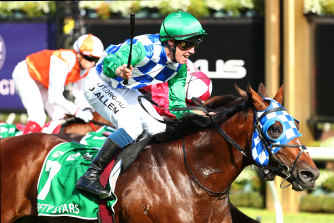 Fifty Stars' Australian Cup win of 2020 was a recent highlight for Lindsay Park.