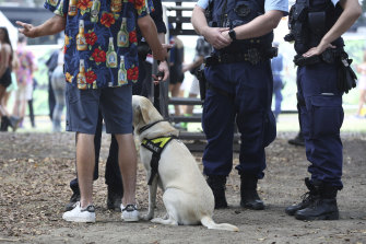 Police question a man after a sniffer dog identified him for suspected drug possession.