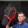 Mystic Journey in good shape - but Cox Plate her ultimate goal