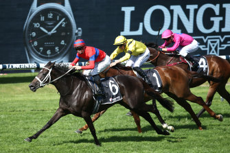 Verry Elleegant edges out Addeybb in last month's Ranvet Stakes at Rosehill