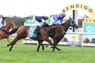 Princess Jenni (inside) will contest the Perth Cup on Saturday.