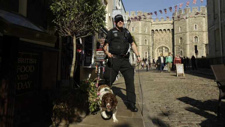 A police search dog and handler patrol outside Windsor Castle ahead of Princess Eugenie's wedding.