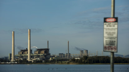 Worker injured in Liddell power plant failure, triggering shortages