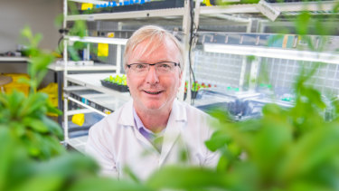 Research Director of the La Trobe Institute for Agriculture and Food at AgriBio, Professor Jim Whelan, is out to bust the green thumb myth.