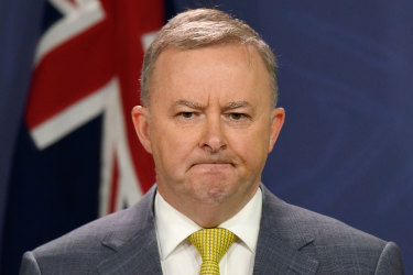 Albanese calls Labor's 45 per cent emissions target at election a 'mistake'