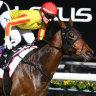 WA stars making hay here - will easterners take revenge in Perth?