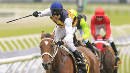 Waller wins Sydney Cup for his mates as Selino holds on