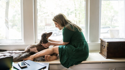 Talking cats & dogs: why you should be chatting to your pet