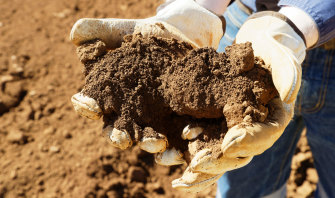The ore at Northern Minerals Browns Range project in WA is prospective for rare earths.